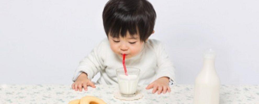 Dị ứng đạm sữa bò là gì